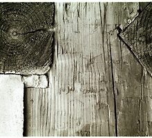 planks and knots cross section by ragman