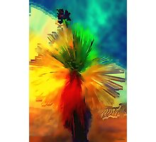 Cactus Abstract Photographic Print