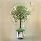 green ideas by vinpez