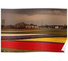 Black Cloud Heralds Rain Over Dutch Tulip Fields Poster