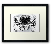 Tarantula -  Along Came a Spider Framed Print