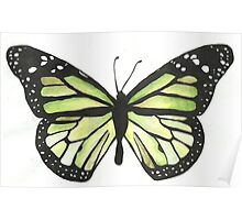 green butterfly again Poster