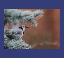 Haughty Blue Jay T-Shirt