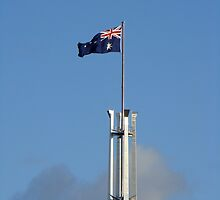flag waving by Jan Stead JEMproductions