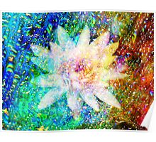 Water Lily with iridescent water drops Poster