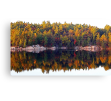 Fall Display Canvas Print