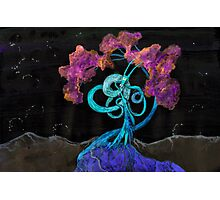 WDVMM - 151 - Tree and Wyrm Photographic Print