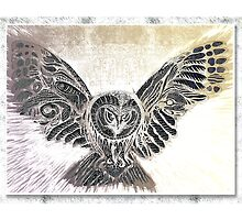 Owl Spread Your Wings - reverse light by sonanonymous