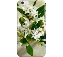 Coastal Beard Heath 2 iPhone Case/Skin