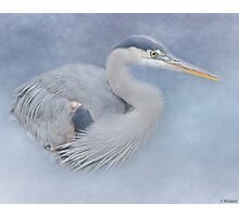 Blue Heron Art - Creativity Photographic Print