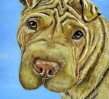 """Aspen"" - Shar-Pei by thatdogshop"