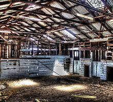 Wool sheds, idle since late 70s. by shaynetwright