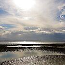 Wet Sand by Faith Barker Photography