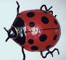 Ladybug by Elizabeth Arlene  Smith
