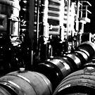 Wine - The Universal Elixir