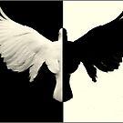 ~DeeBird~ by a~m .
