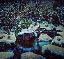 WINTER by jamari  lior