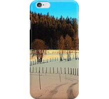 Hiking on a winter afternoon | landscape photography iPhone Case/Skin