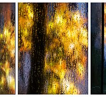 Rainy Day Blues Triptych by Mary Ann Reilly