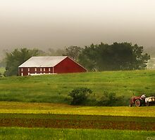 Tilling the fields by Mike  Savad
