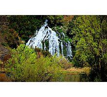 Thousand Falls...Hagerman, Idaho Photographic Print