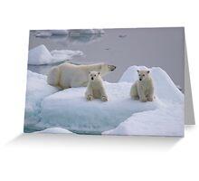 Polar Bear Family II Greeting Card