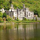 Ireland  by mcstory