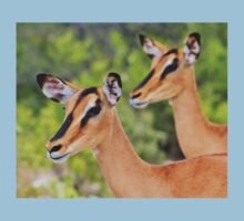 Black Faced Impala - Together in Curiosity Kids Clothes