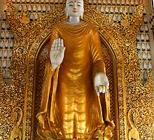 Lord Buddha - Dhammikarama Burmese Temple by David Hutcheson