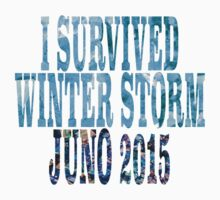 I Survived Winter Storm Juno 2015 by wickedgamezz