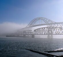 Fog on the Fraser by bluemtnblues