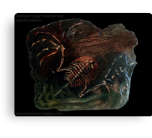 Mythical Flying Trilobite Fossil I Canvas Print