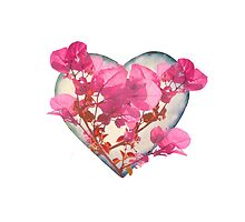 Heart Shaped with Flowers Digital Collage by DFLC Prints