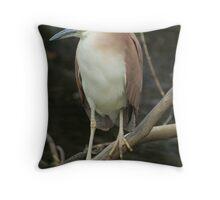 rufous night heron Throw Pillow