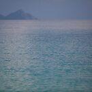 Quiet Water One by Dragomir Vukovic