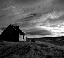 Landscapes and details by Ranald