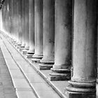 A Row of Columns by Donna Corless