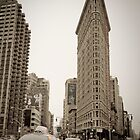 Flatiron Building. New York City. by Alan Copson