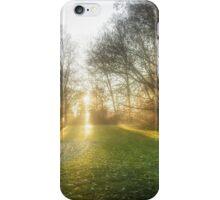 Sunset iPhone Case/Skin