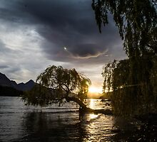 Lakes Edge by Bruce Reardon