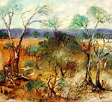 Outback Garden by catherine walker