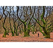 Ghost running in the haunted forest Photographic Print