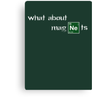 What about magnets? Canvas Print