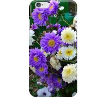 Asters iPhone Case/Skin