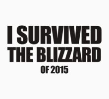 I Survived the Blizzard of 2015 by AbandonedBerlin