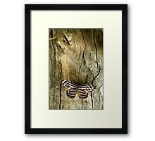 Wood Work Framed Print