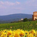 Bella Tuscany by Mathew Russell