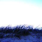beach by rich84