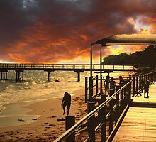 Golden sunrise Hervey Bay by robert murray
