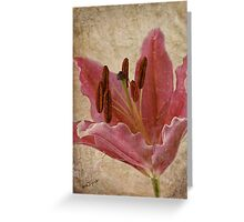 Pink Lily * Wall Art Greeting Card